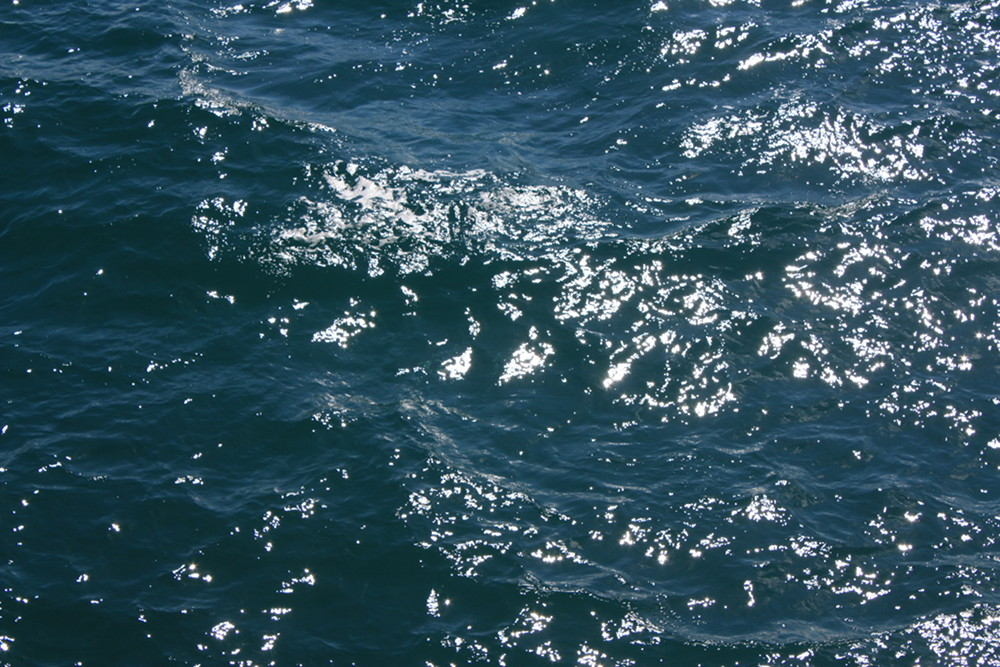 close up of the surface of the pacific ocean